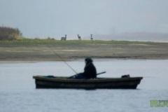 Сарни та рибалка. Фото: Smyk-iLya, CC-BY-SA 4.0