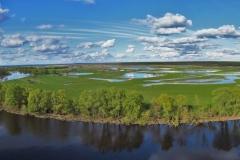 Річка Десна в Мезинському національному парку. Фото: Alina-Inosova, CC BY-SA 4.0